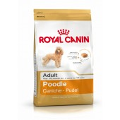 ROYAL CANIN BARBONE  ADULT 1,5 KG